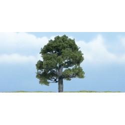 WLS-TR1606 PREMIUM TREES OAK 1