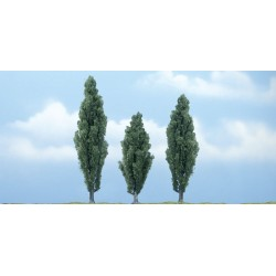 WLS-TR1611 PREMIUM TREES POPLAR 3