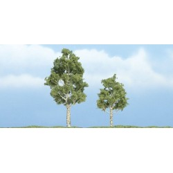 WLS-TR1612 PREMIUM TREES ASPEN 2