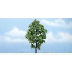 WLS-TR1623 PREMIUM TREES HICKORY 1
