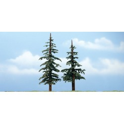 WLS-TR1628 PREMIUM TREES LODGEPOLE 2