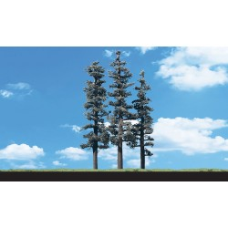 """WLS-TR3562 STAND.TIMBER CONIFER6""""-7"""""""
