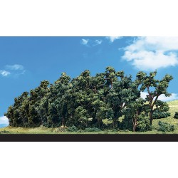 """WLS-TR3582 HEDGEROW 1""""-4"""""""