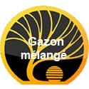Gazon mélangé