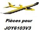 Pièces détachées pour JOY6103V3