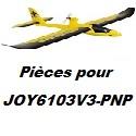 Pièces détachées pour JOY6103V3-PNP